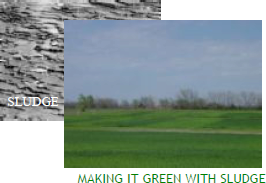 Making it green with sludge